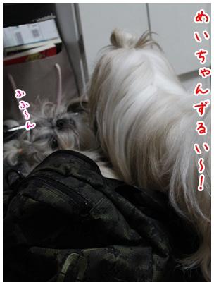 2010-10-05-05.jpg