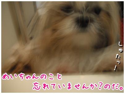 2010-10-06-03.jpg