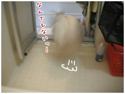 2010-10-06-07.jpg