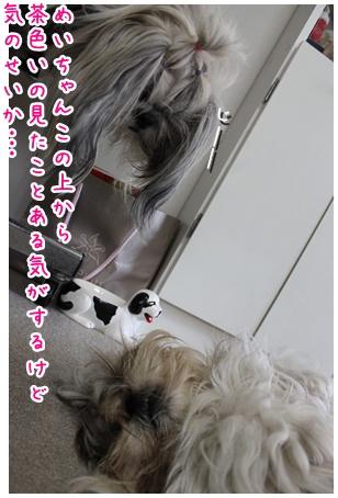 2010-10-11-06.jpg