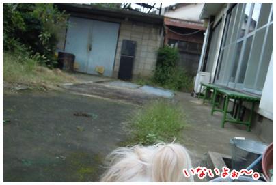 2010-10-12-02.jpg