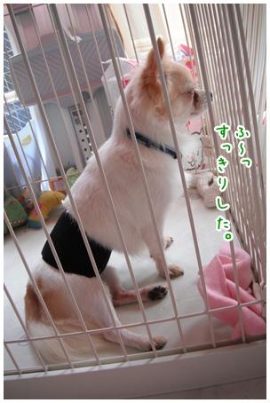 2010-10-17-01.jpg