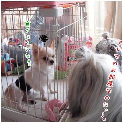 2010-10-17-02.jpg