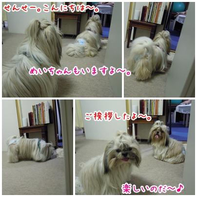 2010-10-21-03.jpg