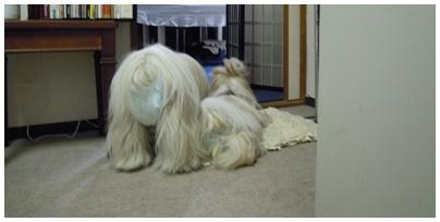 2010-10-21-04.jpg