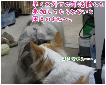 2010-10-22-03.jpg