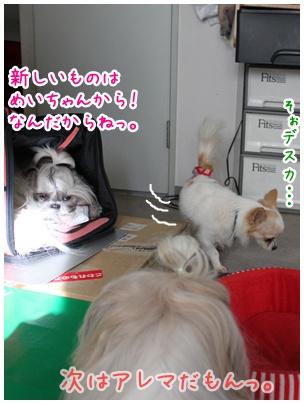 2010-10-24-10.jpg