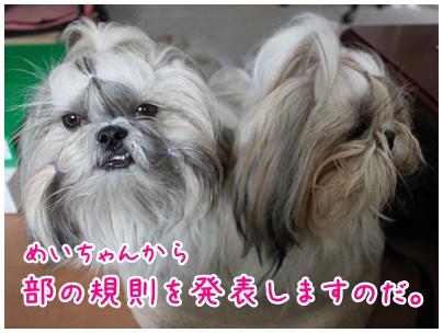 2010-11-01-01.jpg
