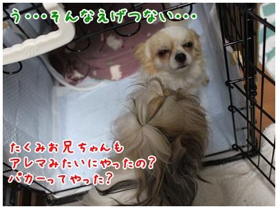 2010-11-04-03.jpg