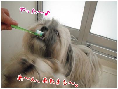 2010-11-06-04.jpg