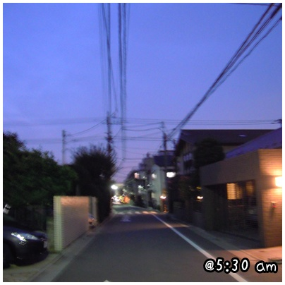 2010-11-09-01.jpg