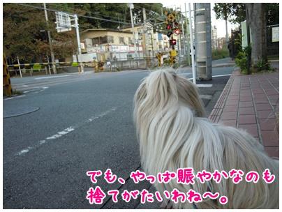 2010-11-10-07.jpg