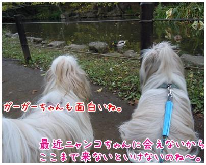 2010-11-12-02.jpg