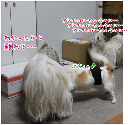 2010-11-19-06.jpg