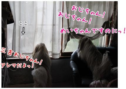 2010-11-23-01.jpg
