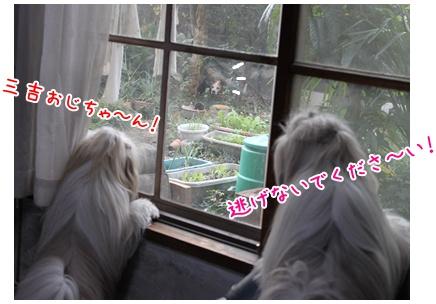 2010-11-23-04.jpg