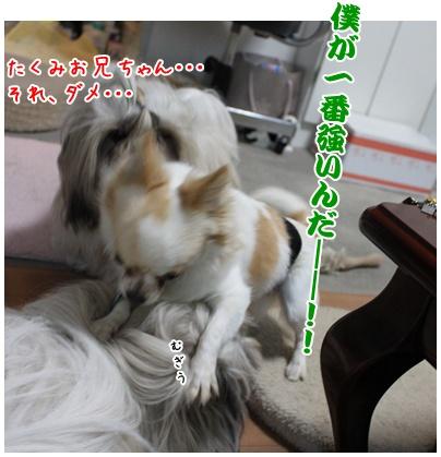 2010-11-24-01.jpg
