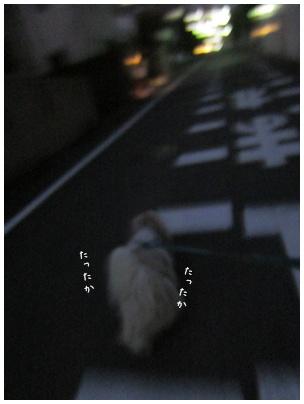 2011-11-15-01.jpg