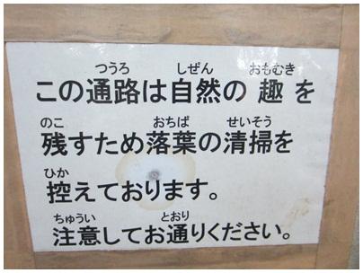 2011-12-07-04.jpg