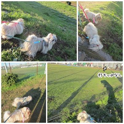 2011-12-11-07.jpg