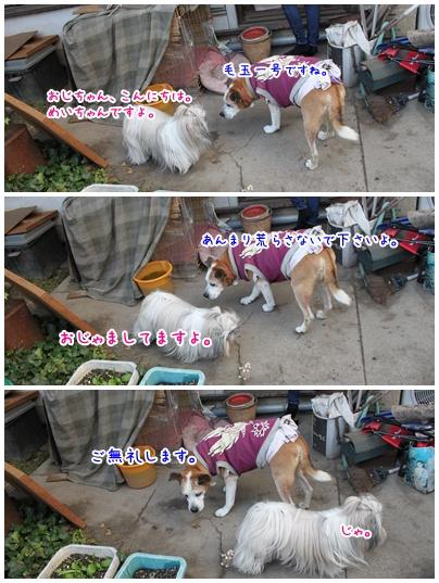 2011-12-12-07.jpg