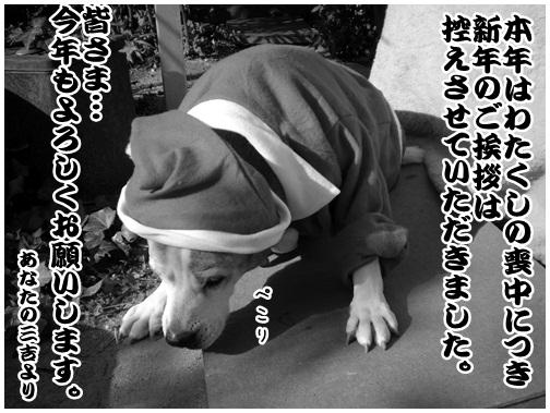 2012-01-08-01.jpg