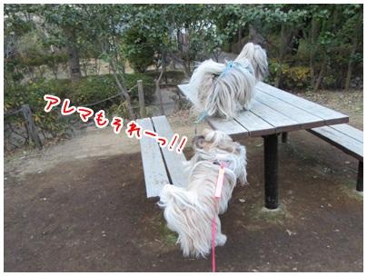 2012-01-09-09.jpg