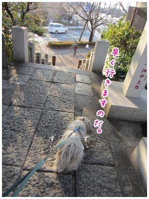 2012-01-13-06.jpg