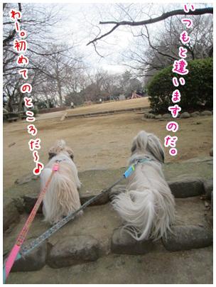 2012-01-15-03.jpg