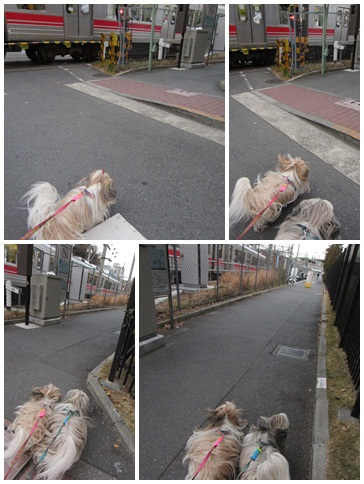 2012-01-16-07.jpg