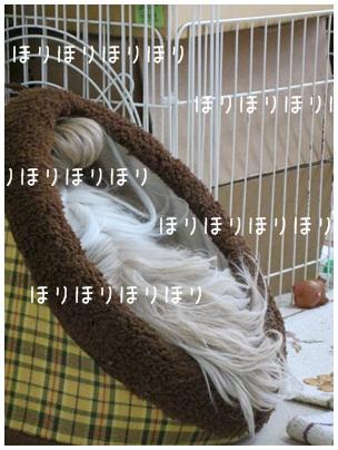 2012-01-22-03.jpg