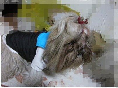 2012-01-23-02.jpg