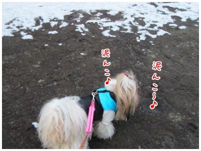 2012-01-27-03.jpg