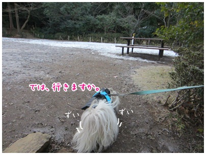 2012-01-29-02.jpg