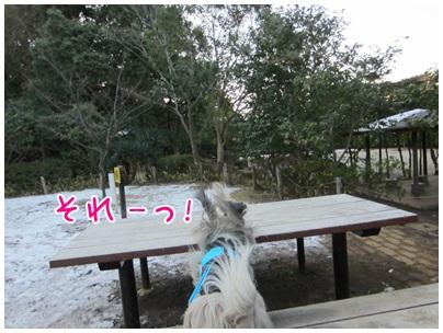 2012-01-29-05.jpg