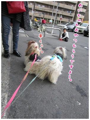 2012-02-09-07.jpg
