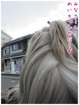 2012-02-17-03.jpg