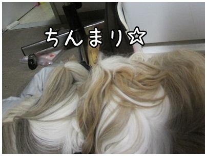 2012-03-03-05.jpg