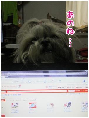2012-03-10-01.jpg