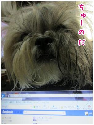2012-03-10-02.jpg