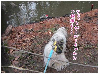 2012-03-12-08.jpg