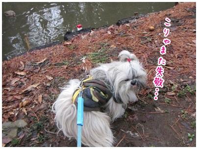2012-03-12-09.jpg