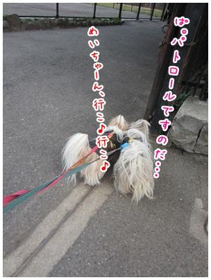2012-03-25-01.jpg