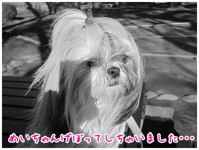 2012-03-28-05.jpg