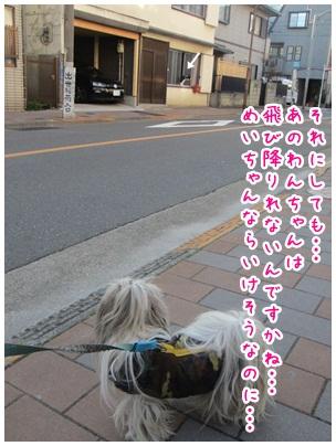 2012-03-31-06.jpg