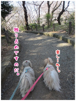 2012-04-15-02.jpg