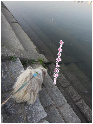2012-04-16-08.jpg