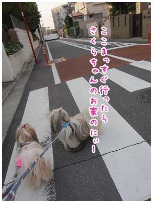 2012-04-23-01.jpg