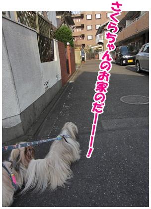 2012-04-23-08.jpg