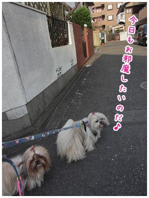 2012-04-23-09.jpg